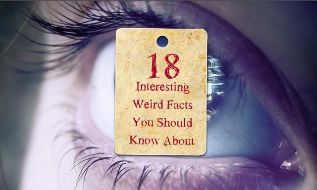 18 weird facts