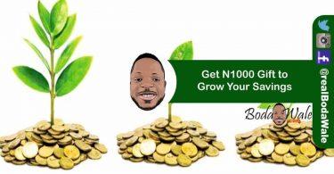 grow savings with piggyvest by bodawale.com